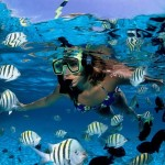 Mayan Riviera Snorkel