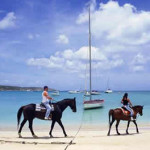 Vacations in Anguilla