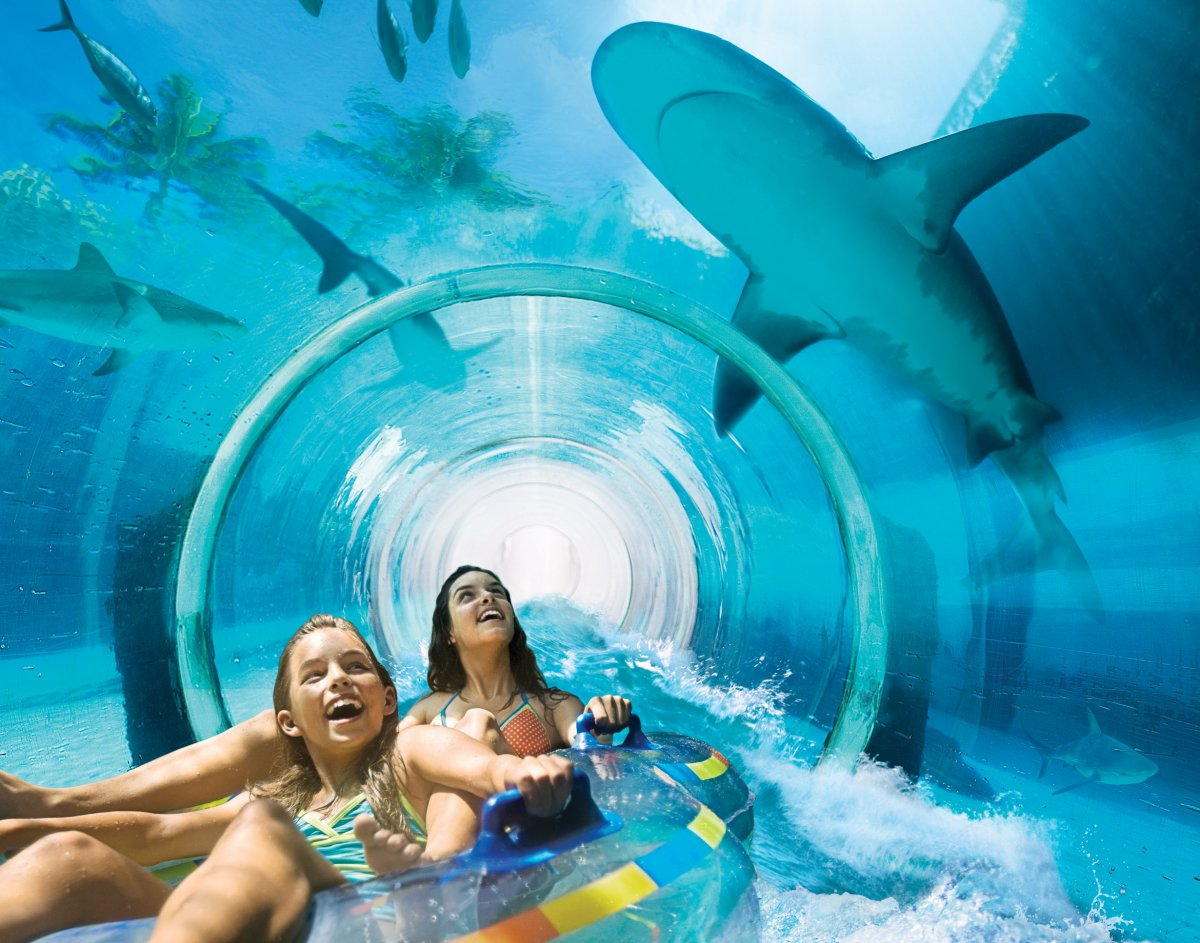 8 Stunning Reasons To Visit Atlantis Bahamas   Best Family Beach Vacations